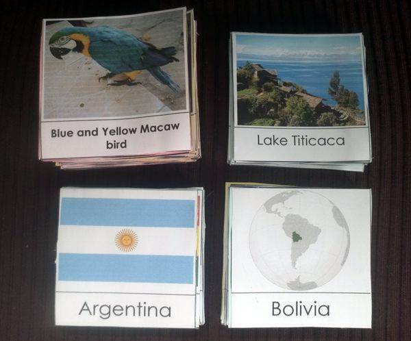 Cartões de Memória de Geografia